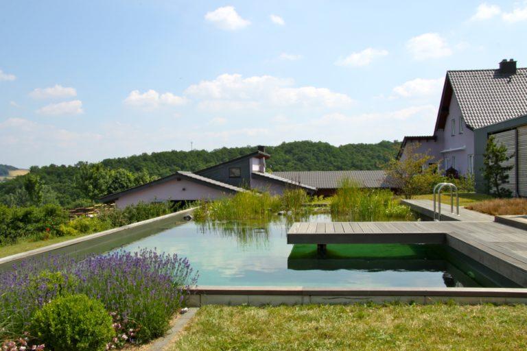 bassin naturel jardin