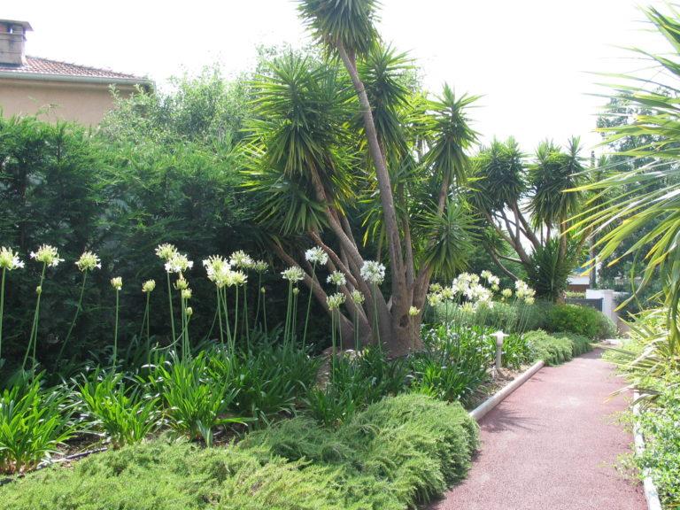 jardins provençaux