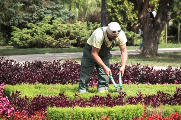 Entretenir jardin